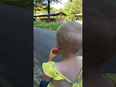 Video Of Village Creek, AR