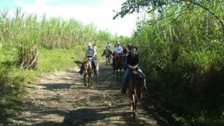 preview picture of video 'HorseBack Riding * Vacation Rentals * Dominican Republic, Puerto Plata!'