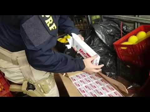 Mais de 200 mil maços de cigarros contrabandeados são apreendidos entre carga de melão na BR 343
