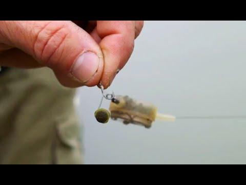 La pesca con cipolle video