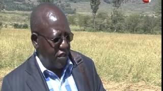 KALRO develops drough-resistant grass