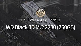 Western Digital WD BLACK 3D M.2 NVMe (250GB)_동영상_이미지