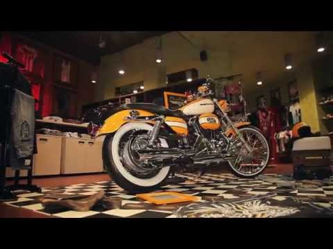 Продажа Harley-Davidson Sportster Cafe 01