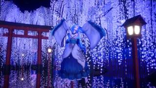 [MMD] 꿈과 벚나무 (리메이크)
