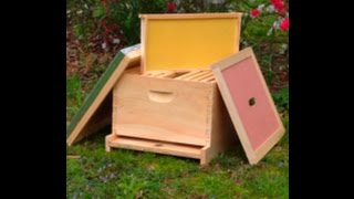 First Year Of Beekeeping (basic equipment) starting your beehive