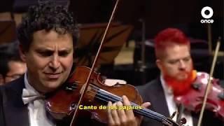 Conciertos OSIPN - Vivaldi y Tchaikovsky