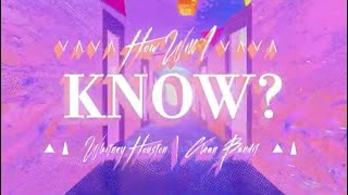 Whitney Houston x Clean Bandit – How Will I Know (Lyric Video)