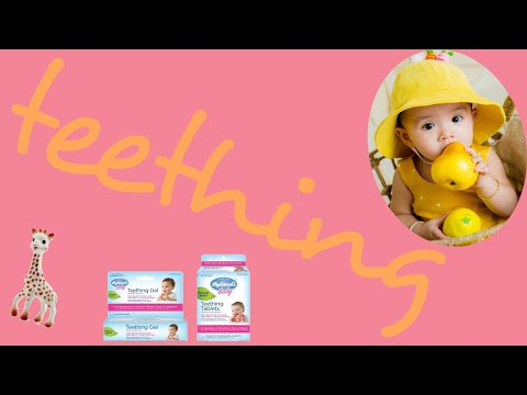 Natural Homeopathic Teething Tablets & Gel | Hyland's Baby Teething Products