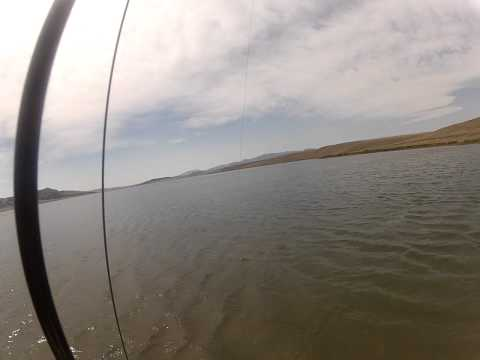 Fishing Alone and Having a Blast