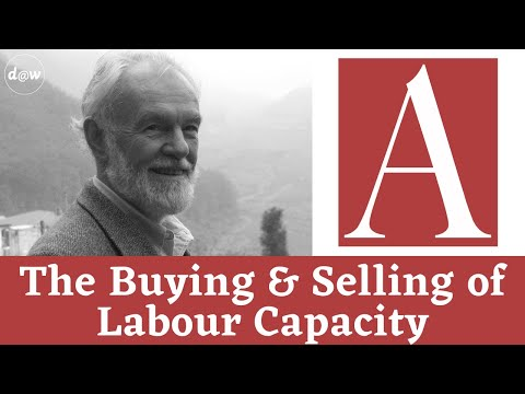 Anti-Capitalist Chronicles: The Buying and Selling of Labour Capacity