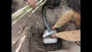 How to make Gur from Sugarcane Feb 6, 2011 Sargodha Pakistan