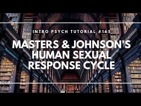Masters & Johnson's Human Sexual Response Cycle (Intro Psych Tutorial #165)