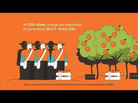 Orange juice generates quality jobs and income