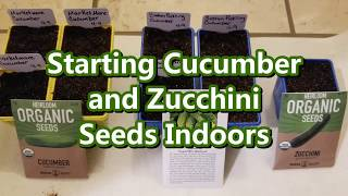 Starting Cucumber and Zucchini Seeds Indoors