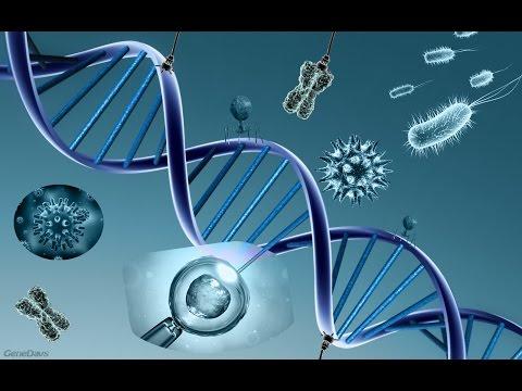 la nanotecnología vencerá a la muerte