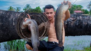 Wow! Catch & Cook Big Catfish In My Homeland – Cooking Catfish Recipes