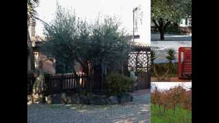 preview picture of video 'Azienda Agricola Taglienti - MONTECOMPATRI (RM) -Via Selva di Fontana Candida, 10 -'