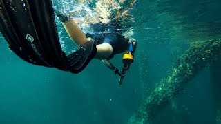 SPEARFISHING // GULF OF MEXICO // SUMMER 2017