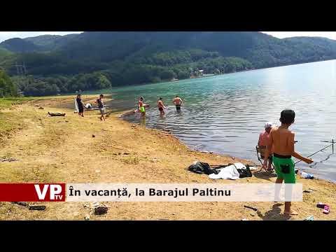 În vacanță, la Barajul Paltinu