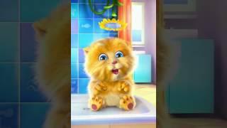 Talking Ginger Sings Dibo Song