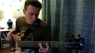 Livin' & Rockin'- 311- Bass Cover