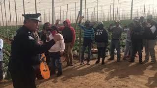 Federales le cantaron a jornaleros de San Quintín