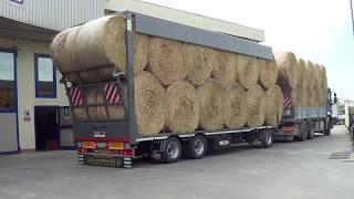 Rimorchio Zorzi 3 Assi - Ribassato Con Centina A 3 Cilindri Idraulici Per Trasporto Foraggi