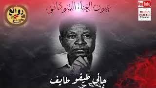 صلاح محمد عيسي — جاني طيفو طايف