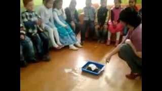 İbrahim Baltacı Orta Okulu Anasınıfı 2013- YANARDAĞ DENEYİ
