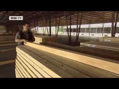 Dauerholz statt Tropenholz | Made in Germany