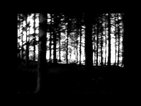 Vidéo de Patrick Dewdney