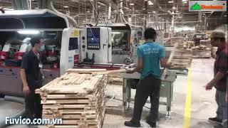Máy bào 4 mặt 6 trục Woodmaster    băng tải nạp phôi tự động, năng suất cao