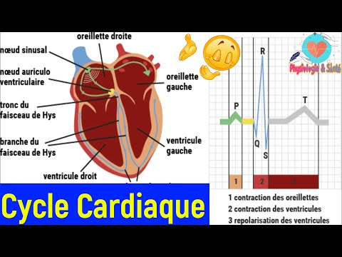 Traitement hypertension portale intrahépatique
