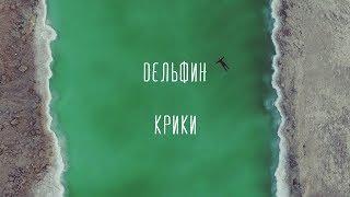 Дельфин   Крики