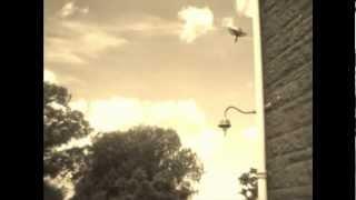 Joel Plaskett - Absentminded Melody