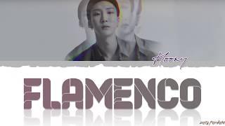 WINNER - 'FLAMENCO' (HOONY SOLO) Lyrics [Color