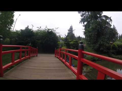 Mingus Park 2