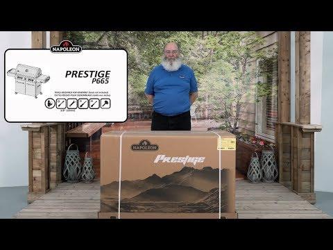 Napoleon Prestige P665RSIB-3 Gas Grill Assembly