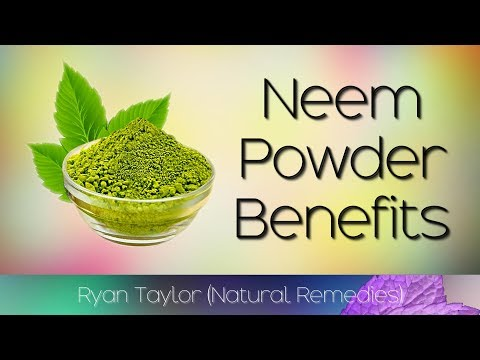 Neem Powder in Coimbatore, Tamil Nadu | Neem Powder Price in