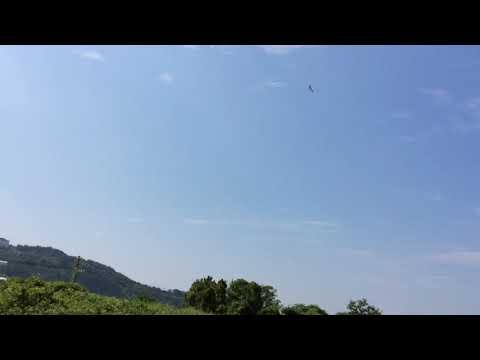 avios-bushmule-1500mm