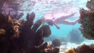 Nuestros Mares - Isla Mujeres