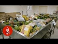 Download Youtube: Where Illegal Food Goes to Die