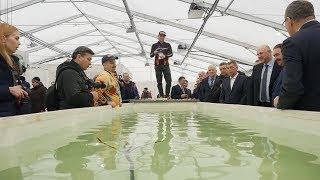 Охотник рыболов выставка в казани