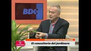 Todo Sobre Palos De Agua, Con Alvaro Ruiz Moreno En Bien De Córdoba (BDC)