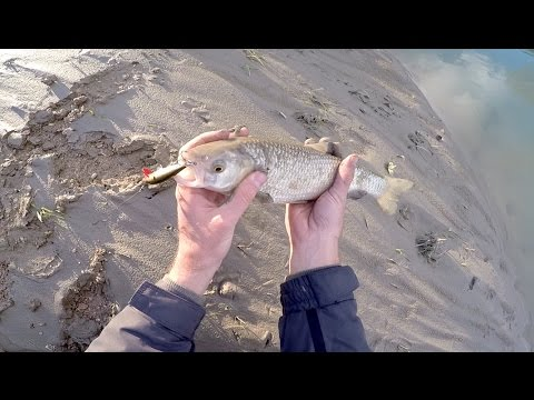 Alexander Voskresensky che pesca