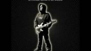 Joe Satriani - Chords of Life