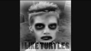 I Like Turtles - REMIX 2010