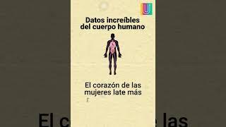 Datos increíbles del cuerpo humano