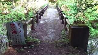 小和田橋(秋川渓谷)のイメージ