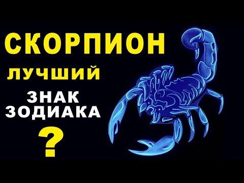 10 ПРИЧИН ПОЧЕМУ СКОРПИОН - ЛУЧШИЙ ЗНАК ЗОДИАКА ♏ СЛОЖНЫЙ, ХРАБРЫЙ И РЕШИТЕЛЬНЫЙ. Гороскоп Скорпион
